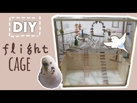 🔨 DIY How to make budgie cage (flight cage)