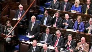 Review of the Dáil 2011