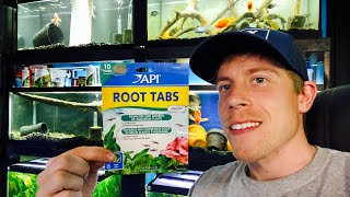 API Root Tabs Review and How to Guide