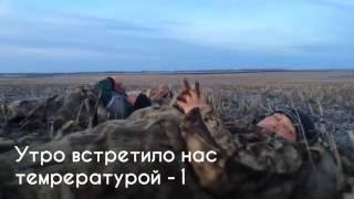 Весенняя охота на гуся 2015 в Татарстане