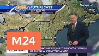 Смотреть видео Собака смутила ведущего прогноза погоды на американском телеканале - Москва 24 онлайн
