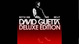 David Guetta- Sunshine (Party Remix) [nothing but the beat D...