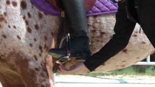 Tara Jones Pieceful Solutions Riding and Training: Foot Position part 1.MTS