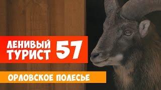Ленивый турист. Орловское Полесье. Выпуск 57