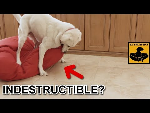 Indestructible Dog Beds From K9 Ballistics®