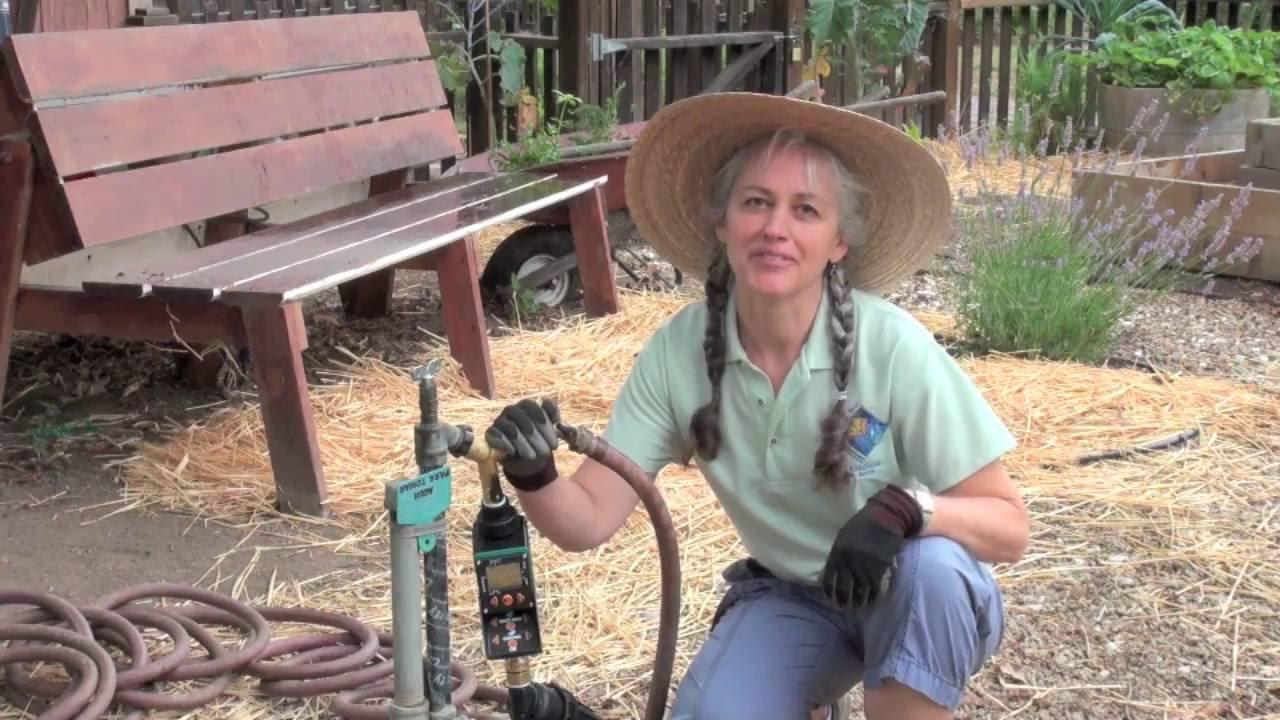 Who we are what we do ucce master gardener program - Master gardeners santa clara county ...
