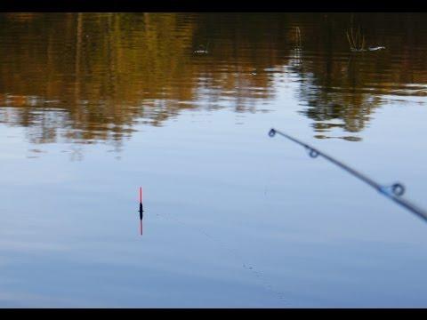 Летняя рыбалка на