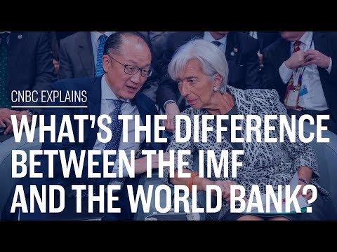 What's the difference between the IMF and the World Bank? | CNBC Explains