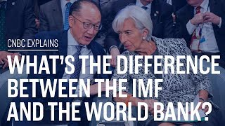 What39s the difference between the IMF and the World Bank  CNBC Explains