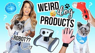Download TESTING WEIRD DOG PRODUCTS! Pet Gadgets + Smart Home Robot | Ariel Hamilton Mp3 and Videos