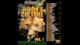 DJ Kenny - Roots Culture Mix Vol. 7 (2009 Mix CD Preview)