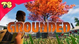 Grounded Продолжаем выживать во дворе на стриме