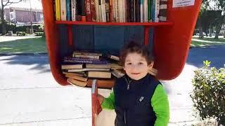 Cos'è la bibliocabina, ve lo spiega un bimbo
