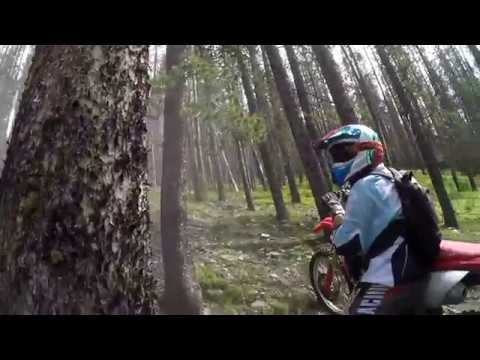 CRF450 s VS Sherco 300 SE-R Factory Race Edition