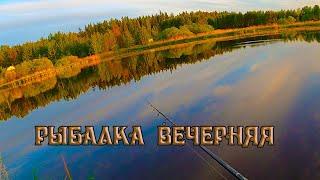 Вечерняя рыбалка на спиннинг с берега на реке видеоотчет