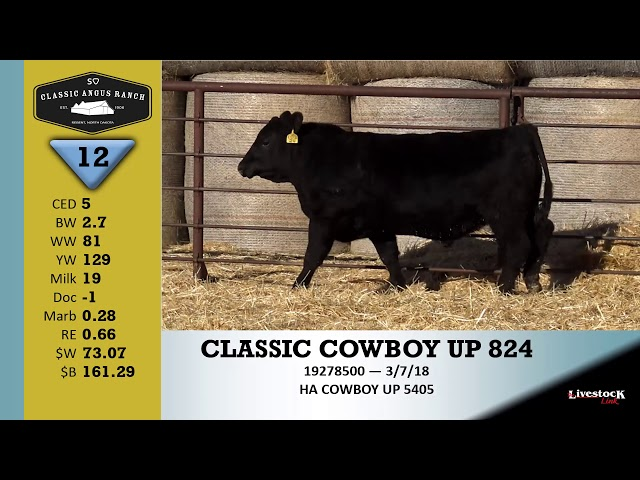 Classic Angus Ranch Lot 12