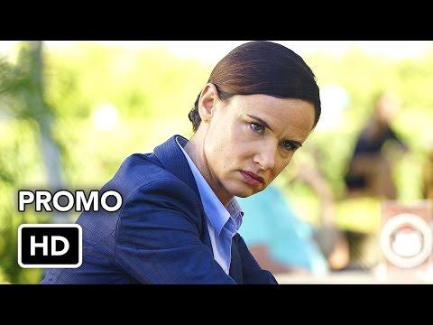 Secrets and Lies 2x05 Promo