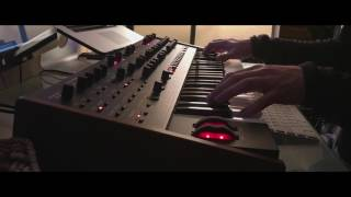 DSI OB-6 and Strymon Big Sky Ambient Improvisation