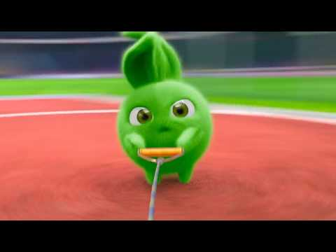 Lagu Video Sunny Bunnies | Athletic Bunnnies | Compilation | Videos For Kids Terbaru