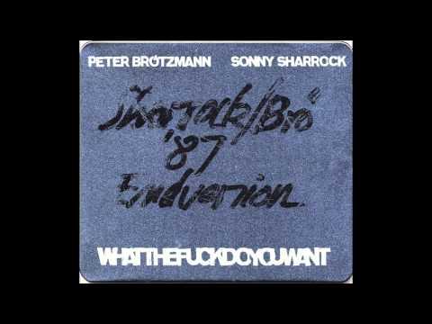 Peter Brötzmann & Sonny Sharrock - Whatthefuckdoyouwant 1