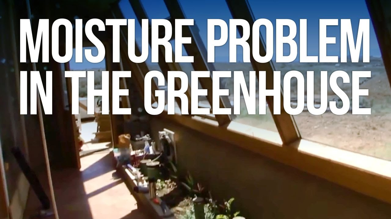Moisture Problem In The Greenhouse   YouTube