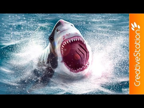 Incredible White Shark Attack - Speed Painting (#Photoshop)   CreativeStation