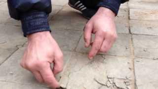 видео Водопоглощение керамической плитки и долговечность покрытия