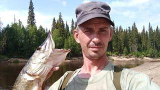 Отдых на рыбалке Ловим щуку и окуня