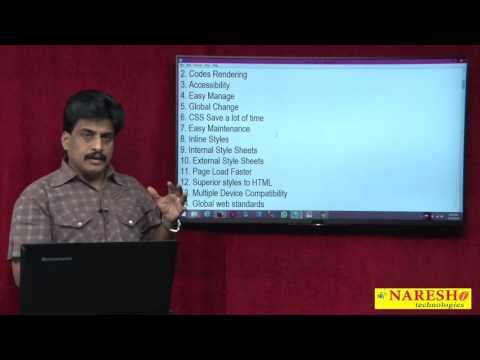 Introduction To CSS | Web Technologies Tutorial | Mr.Subbaraju