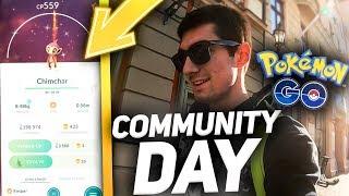 COMMUNITY DAY  SHINY CHIMCHAR  POKEMON GO POLSKA 2019  odc.7