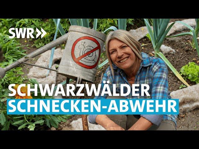 Die Schnecken-Jägerin (5/6) | Mein leckerer Garten