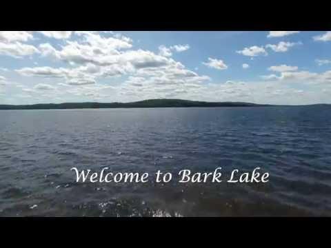 Bark Lake Waterfront  lots
