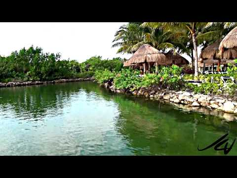 grand-palladium-riviera-a-new-day---youtube