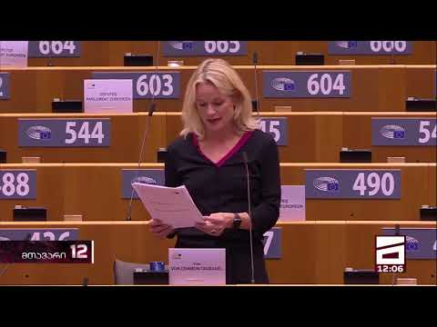 Billionaire Ivanishvili's shadow government threatens democracy - Viola von Kramer