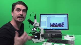 Microscopy of prepare slides: Amoeba and Penicillium