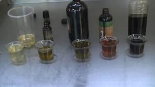 Paradise Oils Jamaican Black Castor Oil: Product Review