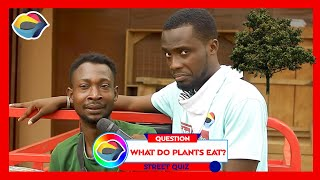 What Do PLANTS Eat? | Street Quiz | Funny Videos | Funny African Videos | African Comedy |