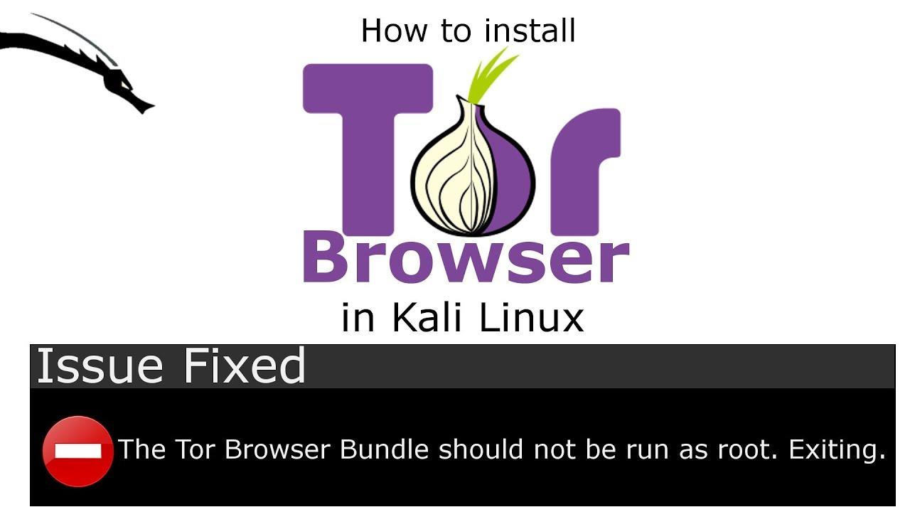Tor browser kali linux root gidra tor browser настройка браузера hyrda