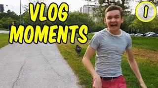 Vlog Moments 1 - Dog Adventure