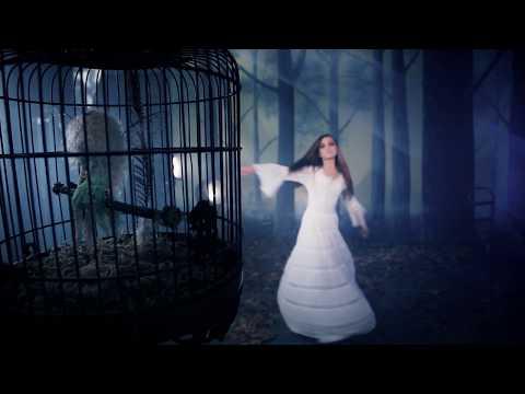 """Stevie Nicks - """"Secret Love"""" Official Music Video"""