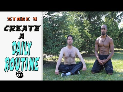 Stage 9: Creating a Daily Routine