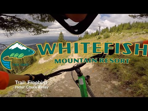 Whitefish Bike Park: Freebird