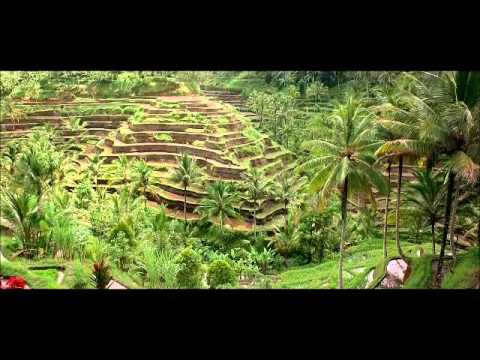 Terrace Farming in Southeast Asia