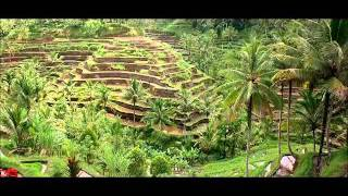 Terrace Farming in Southeast Asia