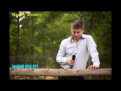 Marius Anghele - Colaj Muzicaa Moldoveni La Petrecere 2017