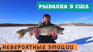 ТРОФЕЙ Лучшая зимняя рыбалка Никогда не отпускал такую рыбу За такими эмоциями ездят на рыбалку