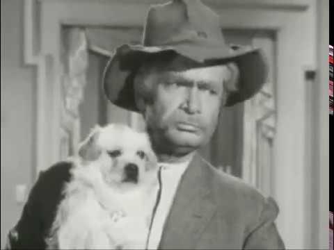 The Beverly Hillbillies - Season 1, Episode 21 (1963) - Jed Plays Solomon - Paul Henning