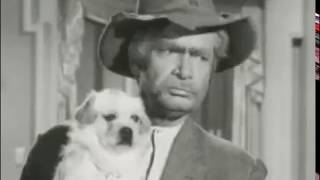 The Beverly Hillbillies - Season 1, Episode 21 (1963) - Jed Plays Solomon - Paul Henning
