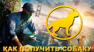 Watch Dogs 2 - MAKE FAST & EASY MONEY ($60,000 in 6 Minutes)
