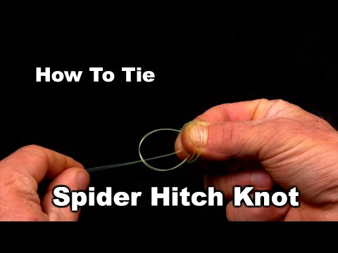 How To Tie The Spider Hitch Fishing Knot
